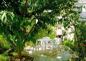городские сады