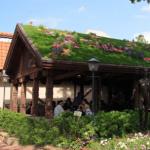 природная крыша