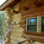 Средства защиты древесины от внешних факторов