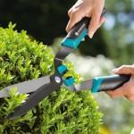 Какие инструменты нужны садоводу?