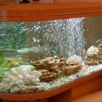 Для чего нужна аэрация в аквариуме